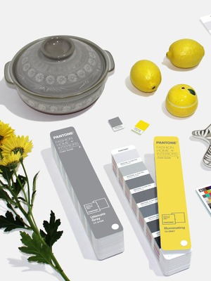 pantone-color-of-the-year-2021-for-home-decor (1)
